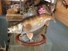 walleye-rock-drifwood-pedestal